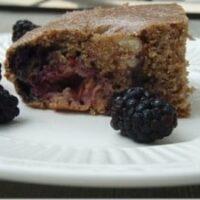 berry almond walnut protein cake bars