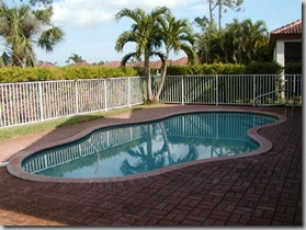 Florida backyard