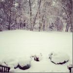 snow_thumb.jpg