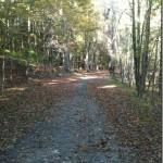 trail-1_thumb.jpg