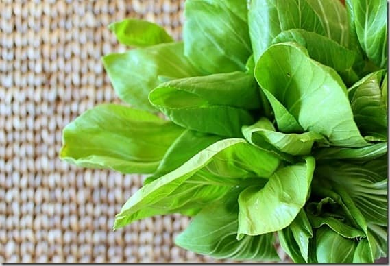 Baby Bok Choy for pineapple cashew bok choy recipe.
