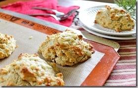 biscuits 1 v2