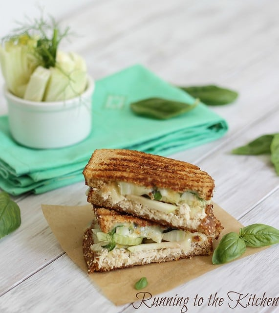 Fennel chicken cheddar panini