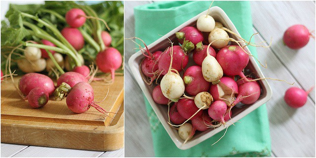 Fresh spring radishes from local CSA