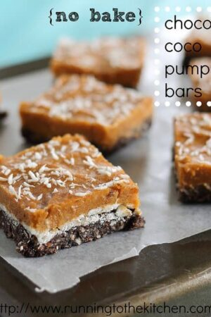 No bake chocolate coco pumpkin bars