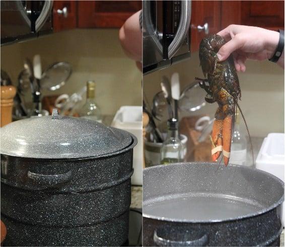 Maine lobster | runningtothekitchen.com