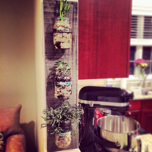How to Make a Wall-Mounted Mason Jar Planter - Running to