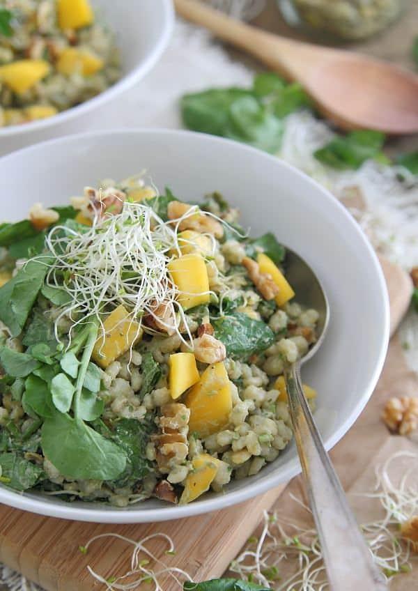 Barley Mango Salad with Avocado Dressing