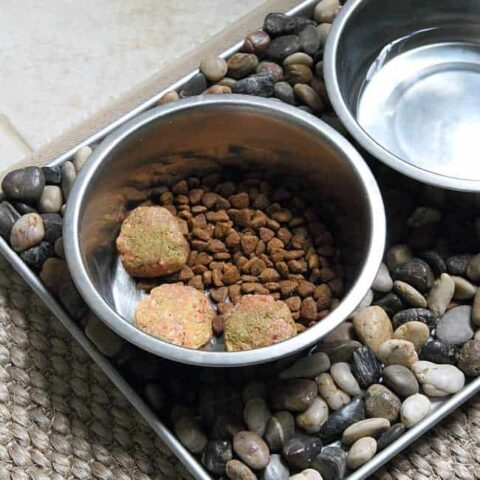 Homemade raw dog food