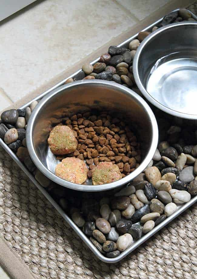 Homemade Raw Dog Food - How to Make Raw
