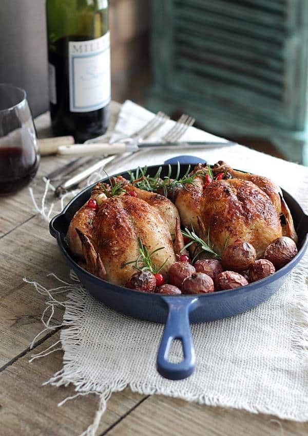 These cranberry apple stuffed cornish hens are roasted in the oven over a bed of red potatoes. It's a simple, elegant fall meal you'll make over and over.