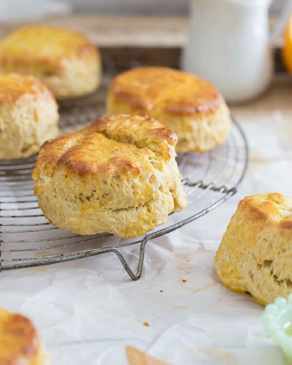These citrus honey biscuits are filled with honey, orange and meyer lemons.