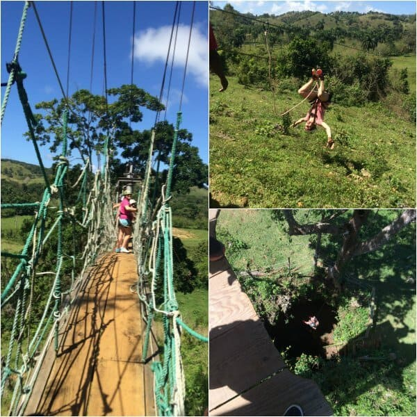 Zipline collage