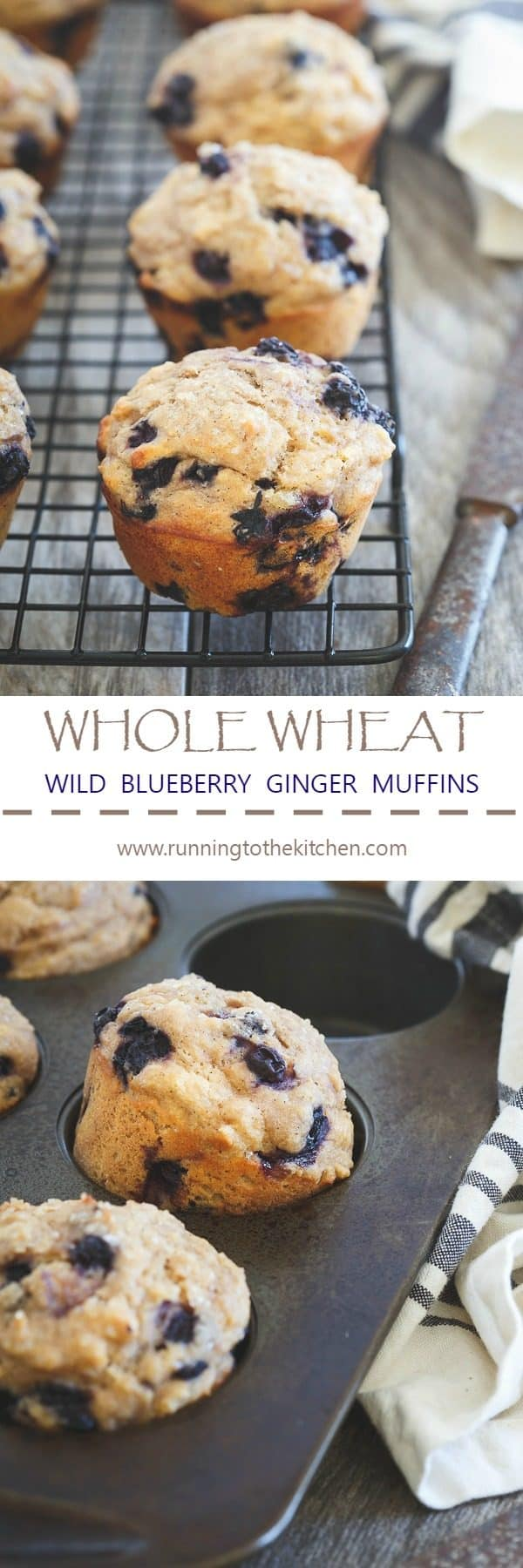 These blueberry ginger muffins are 100% whole wheat and made with wild blueberries and Greek yogurt.