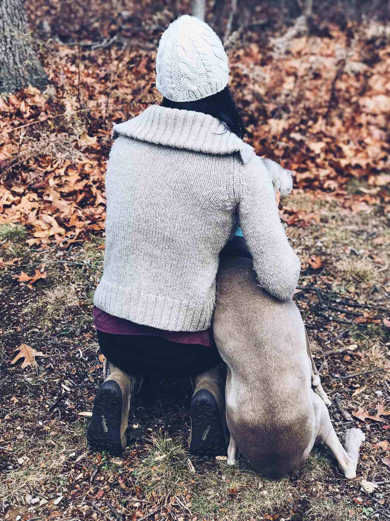 Hiking trails in NY with weimaraner