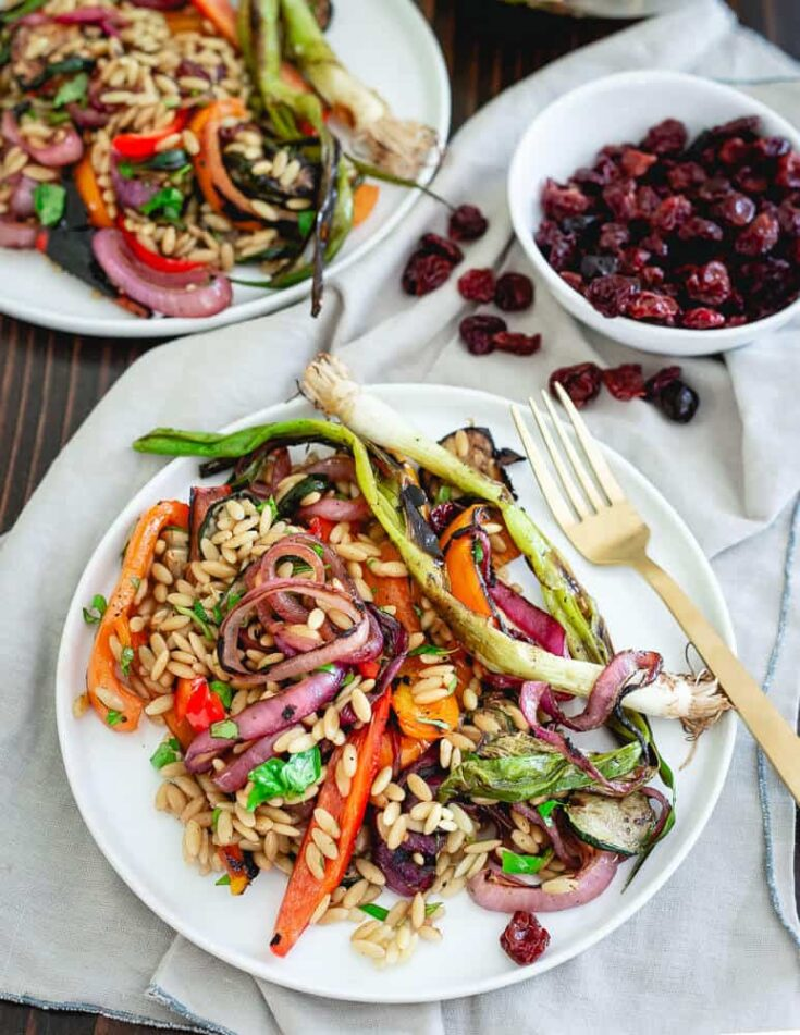 Summer vegetables are coated with a Montmorency tart cherry balsamic glaze, grilled and then combined with orzo for a deliciously seasonal pasta salad. Great served warm fresh off the grill or cold as a side dish at your summer get together.