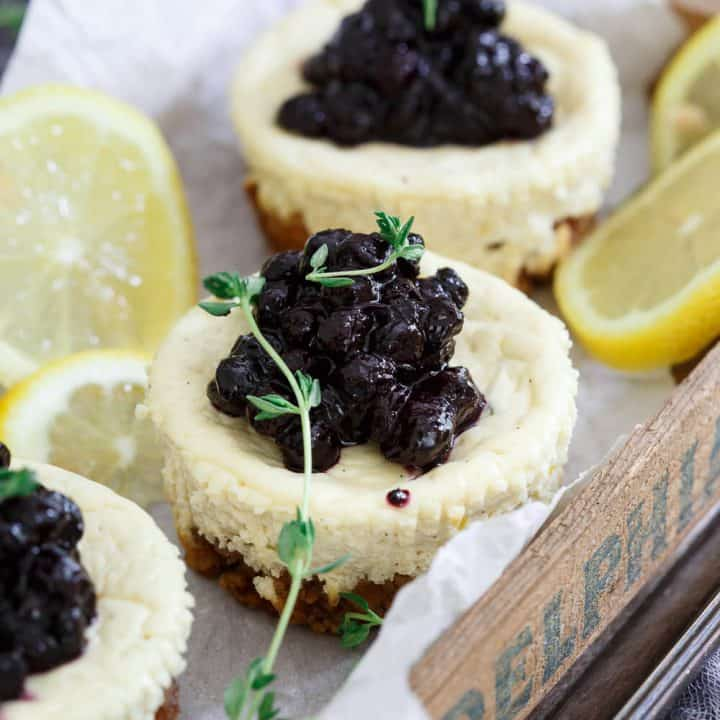 Lemon Thyme Blueberry Mini Cheesecakes