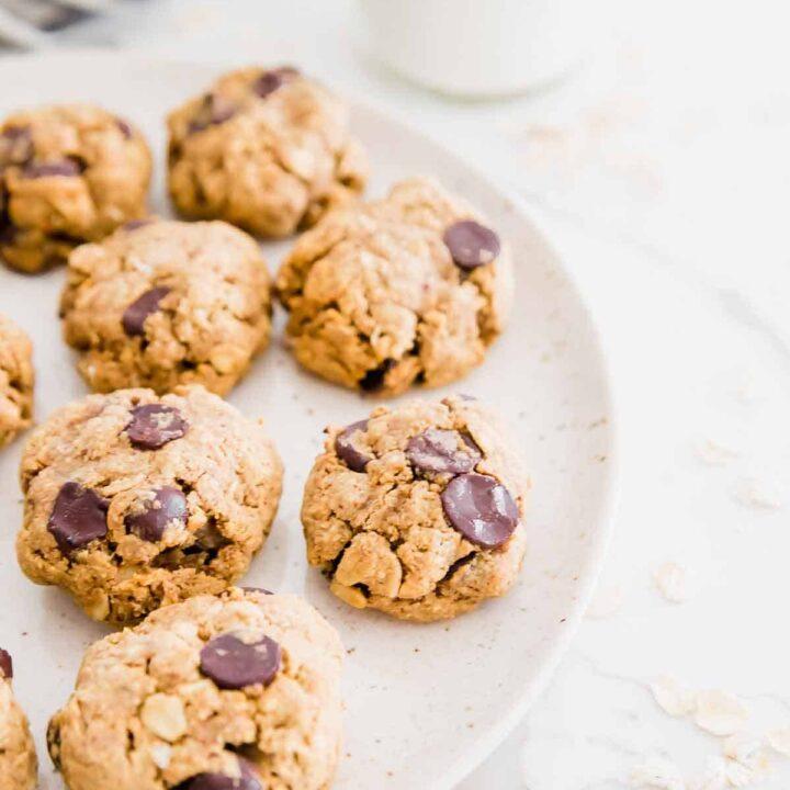 gluten-free vegan oatmeal chocolate chip cookies