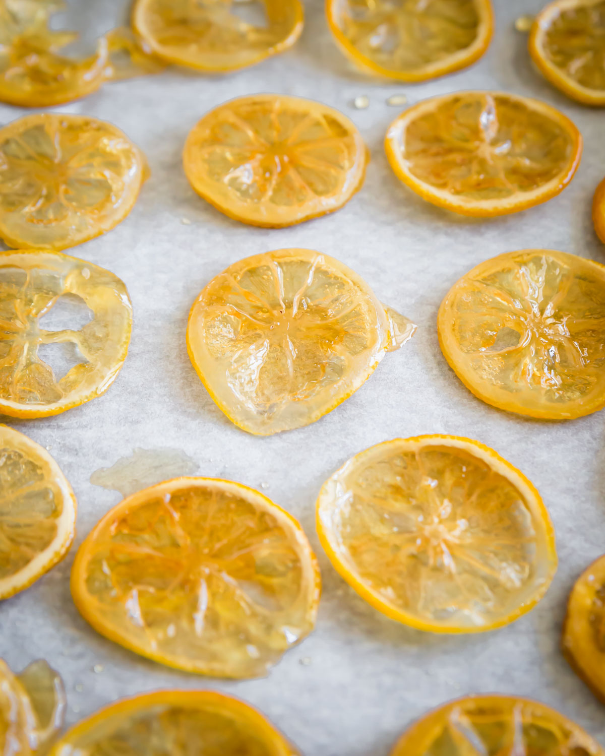 Candied lemon slices after drying for 24 hours ready to be used as dessert garnish or chopped up for baking recipes.