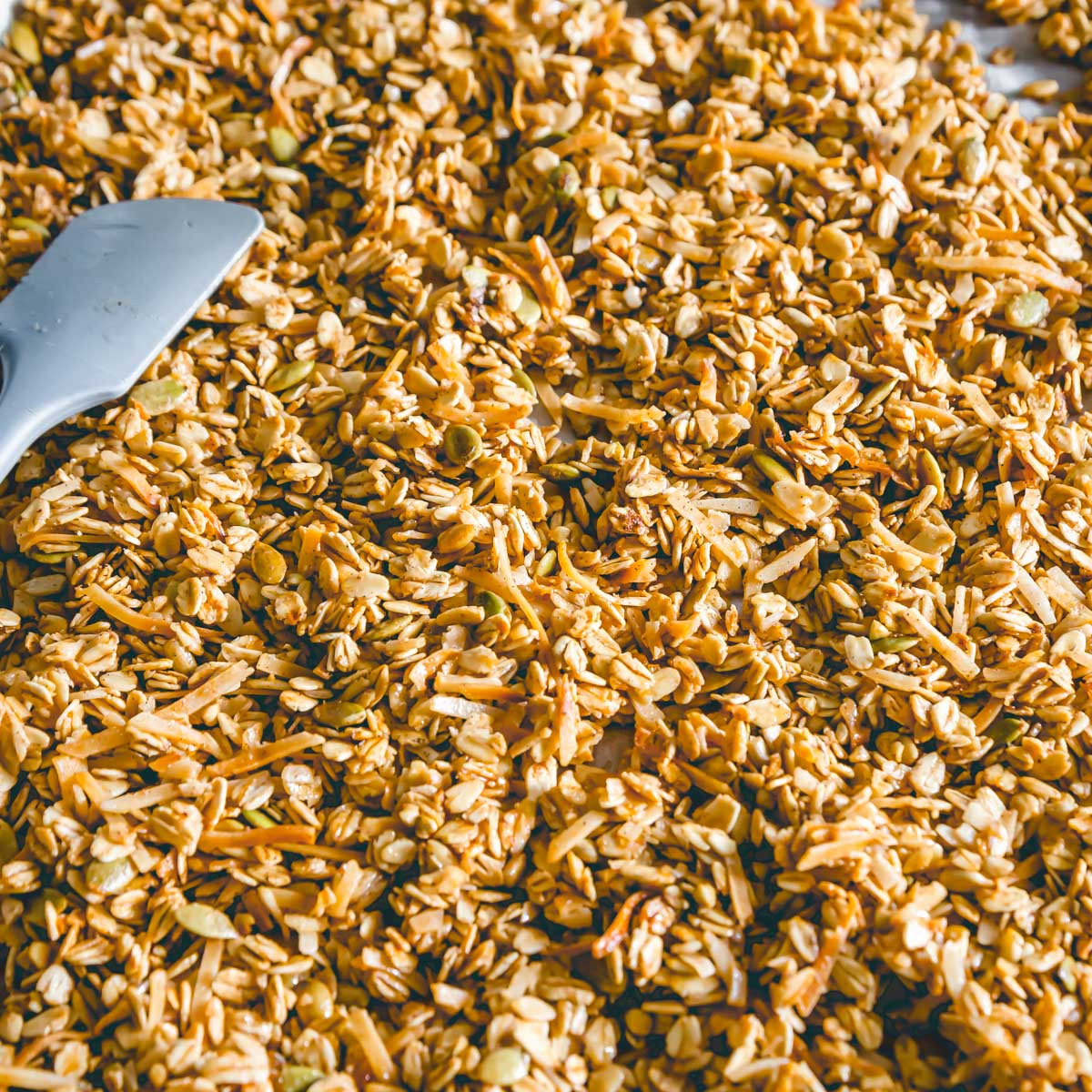 Golden brown baked granola without nuts straight out of the oven before dried fruit is added.